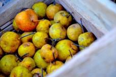 Gluten-free Apple Strudel from The Healthy Apple